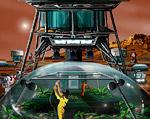 2008 space art contest A Place Called Eden