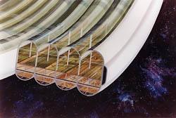 Bernal Sphere Space Settlement Agricultural Rings
