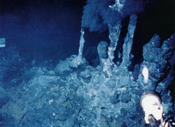 Life in Extreme Environments hydrothermal vent