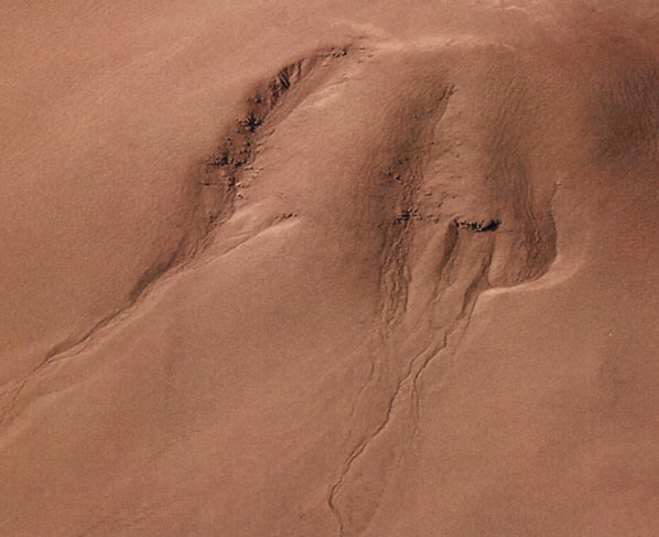 Life in Extreme Environments Martian gullies