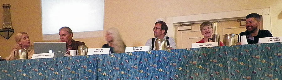 A panel of Space Ambassadors from Phase I of the program